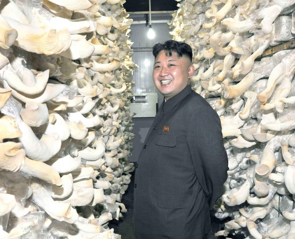 North Korea - the Mushroom Kingdom