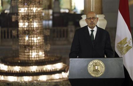 Egypt's interim Vice President Mohamed ElBaradei