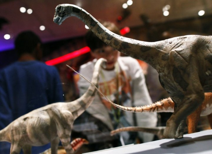 Sauropod dinosaurs not as flexible as in Jurassic Park, claims study