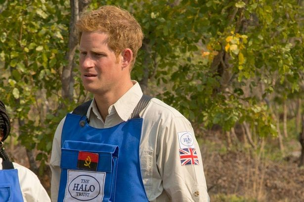 Prince Harry with Halo in Angola