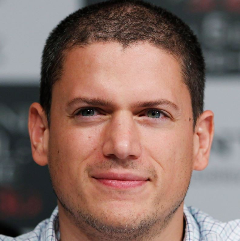 Wentworth Miller has confirmed he is gay.