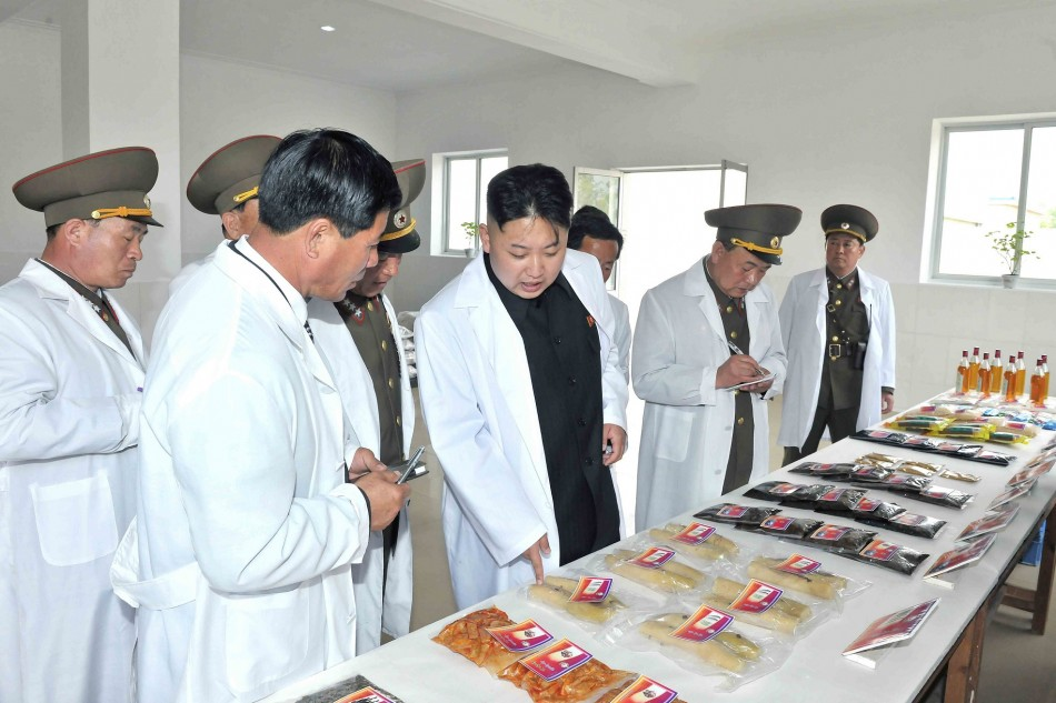 North Korea's food