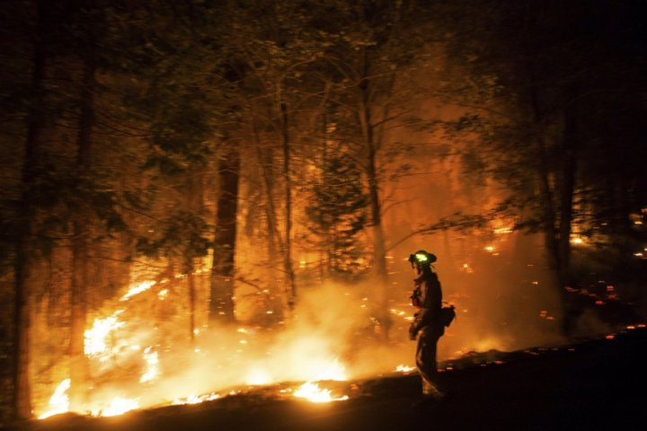 Running surface fire has affected direct line suppression efforts to control Rim Fire in Yosemite National Park , said the park officials. (Photo: Reuters)