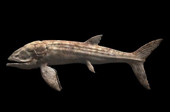 The Leedsichthys is considered the largest fish ever to swim in the oceans, reaching up to 56ft. (seamonsters.wikia.com)
