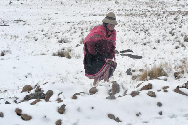 Peru snow