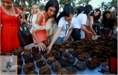 Contestants examining baby turtles before they are released into the wild.