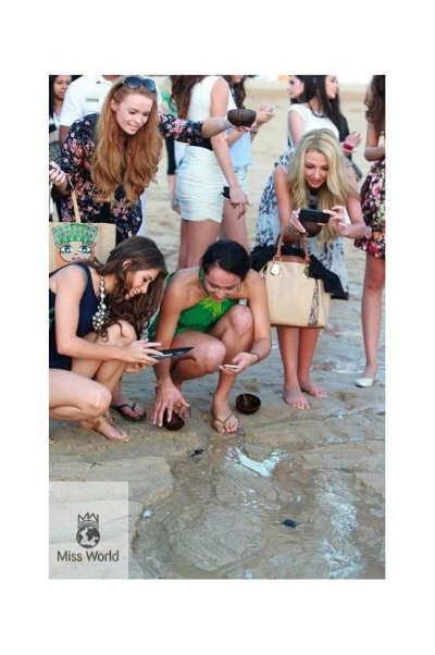 Miss World contestants examine baby turtles before they are released into the wild.