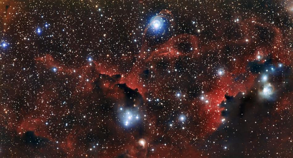 Wings of the Seagull Nebula