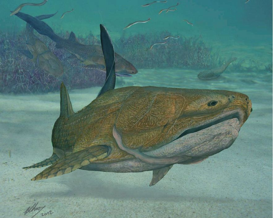An artist's illustration depicts Entelognathus primordialis, the first jawed creature on earth. A fossil of Entelognathus found in China suggests that it had jawbones similar to those of modern fish from which humans evolved. (Photo: BRIAN CHOO/Nature.com)