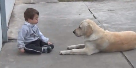 Toddler and dog
