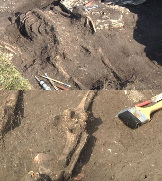 Human remains found at the site. (Photo: YouTube Video Screenshot/LundUniversity)