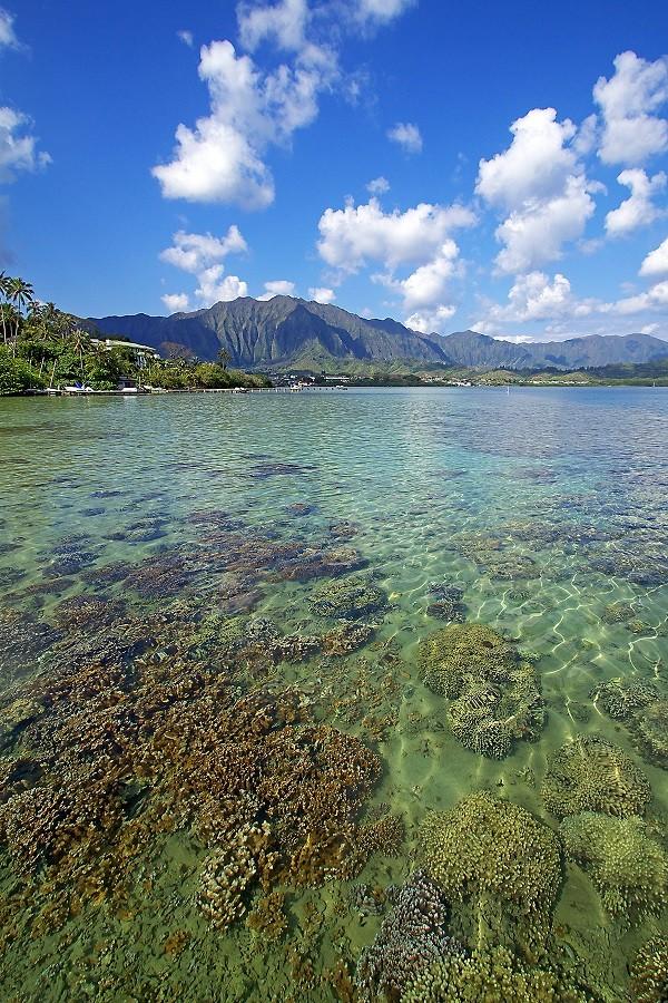 Kāneʻohe Bay, Oʻahu, Hawaiʻi