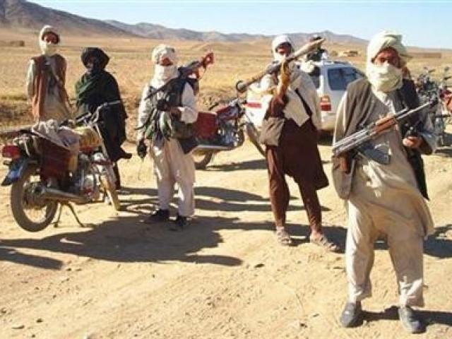 Pakistan Taliban militant captured