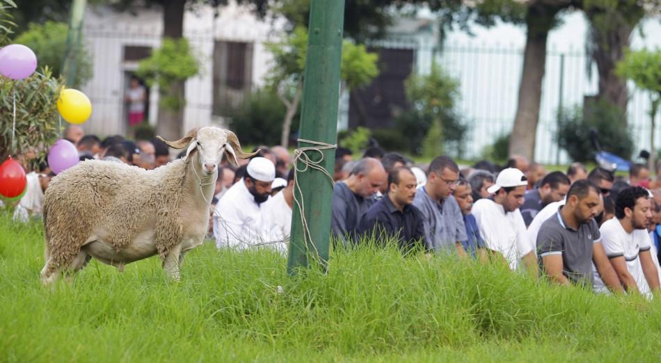 Eid al-Adha 2014
