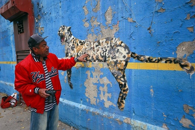 Man touches Banksy work Bronx Zoo near New York Yankees stadium PIC: Reuters