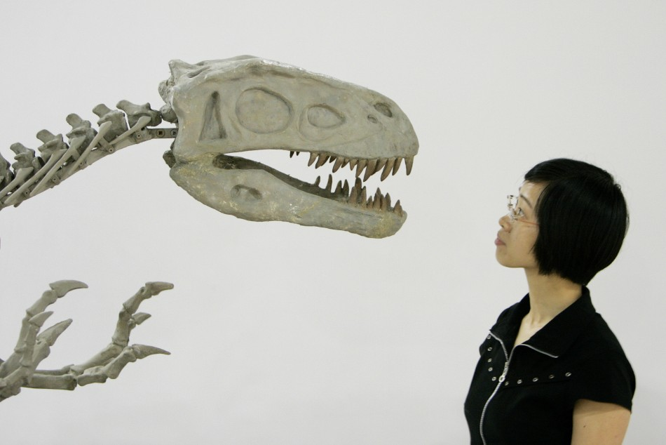 China holds the world record for the most dinosaur egg fossils discovered.