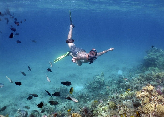 People have been snorkelling in the Pacific to find the hidden treasure. Picture (Reuters)