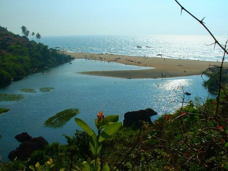 Goan idyll masks seedy underbelly