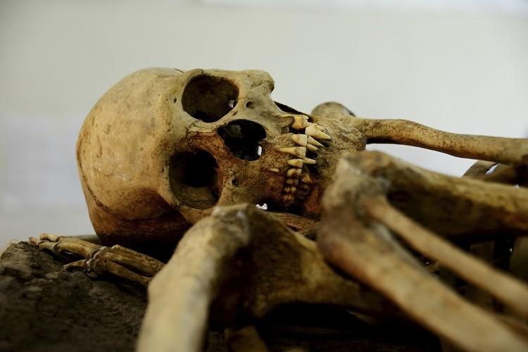 Burundi Skull