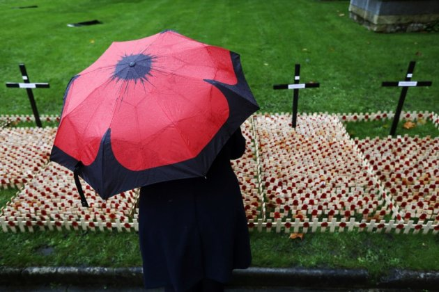 Crosses and poppies dedicated to those killed in current conflict, in the Field of Remembrance at Westminster Abbey in London.