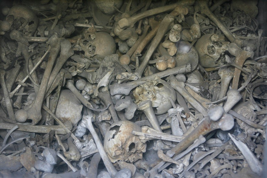 Bones of unknown French and German soldiers at an ossuary near Verdun PIC: Reuters