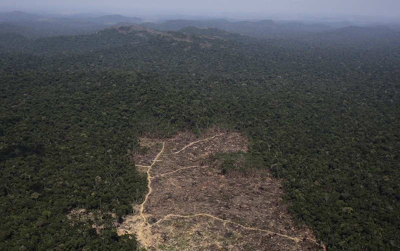 Deforestated area of the Amazon rainforest, where the practice has risen 28% in a year PIC: Reuters