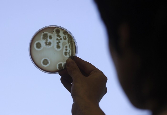 As more antibiotics enter the general population, bacteria become more resistant to them. (Reuters)