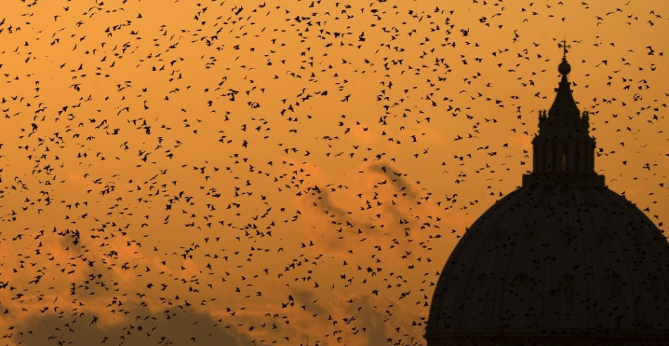 Austerity Leaves Rome Covered In Bird Poo