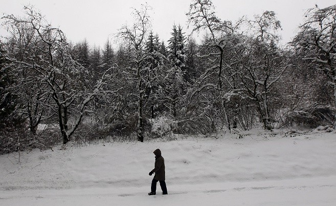 Parts of Scotland, Northern Ireland and Northern England have already seen up to 10cm of snow (Reuters)