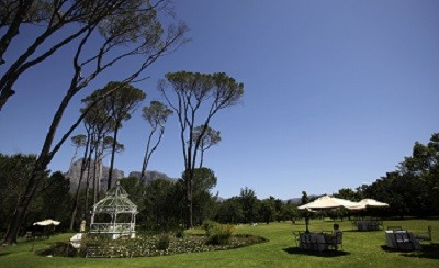 Leafy Stellenbosch's wine making district