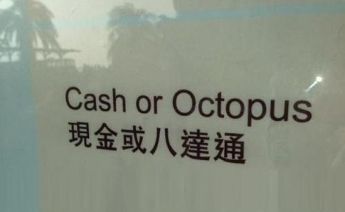 Cash or Octopus