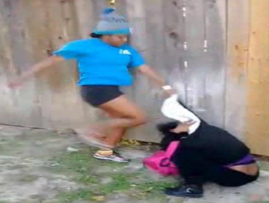Screenshot from the Sharkeisha fight video