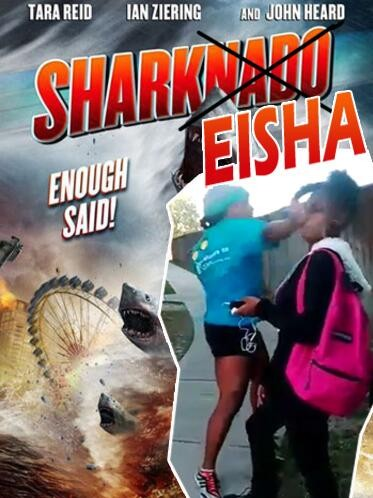 Sharkeisha Fight meme