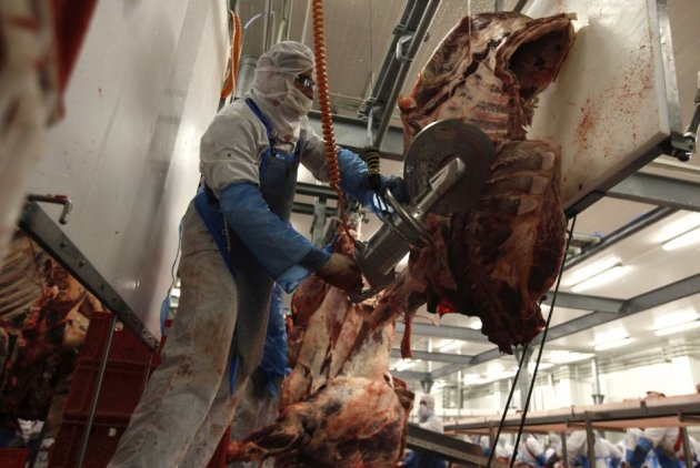 A slaughterer cuts beef carcasses into pieces in the Biernacki Meat Plant slaughterhouse in Golina near Jarocin, western Poland
