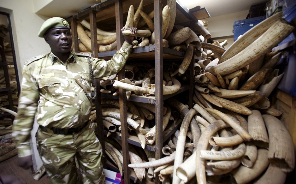 China Criminalise Ivory