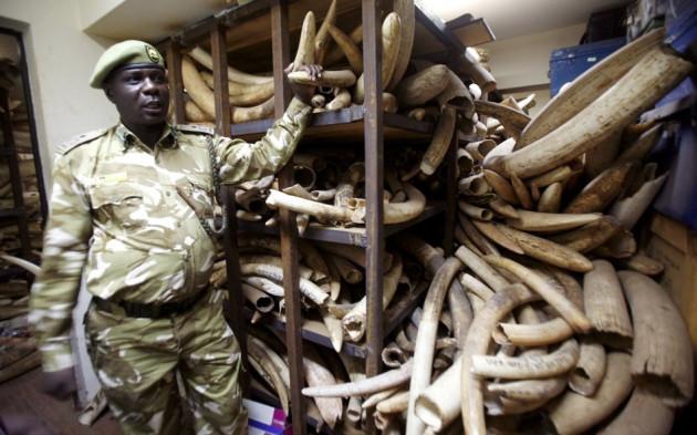 China Criminalise Ivory