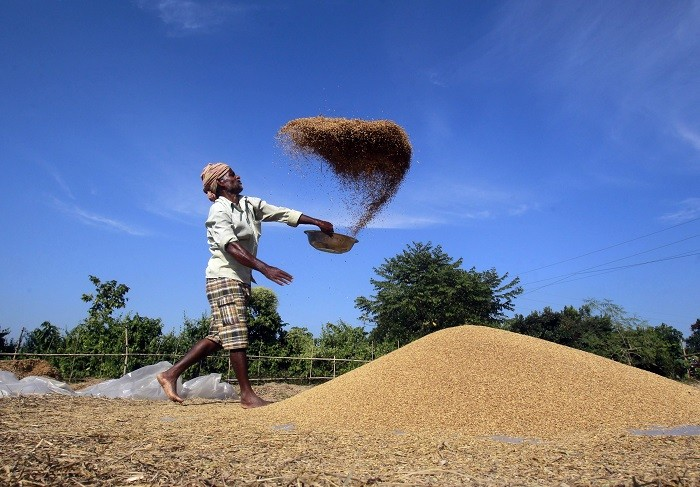 India voiced objections to WTO provisions that could have threatened its grain subsidies. (Reuters)