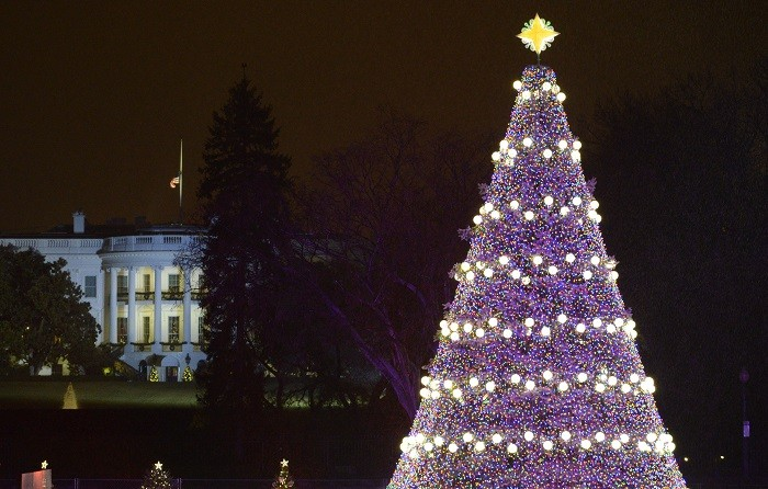 The US national Christmas tree stands in front of the White House in Washington D.C. (Reuters)