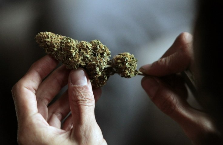 Uruguay set to legalise cannabis
