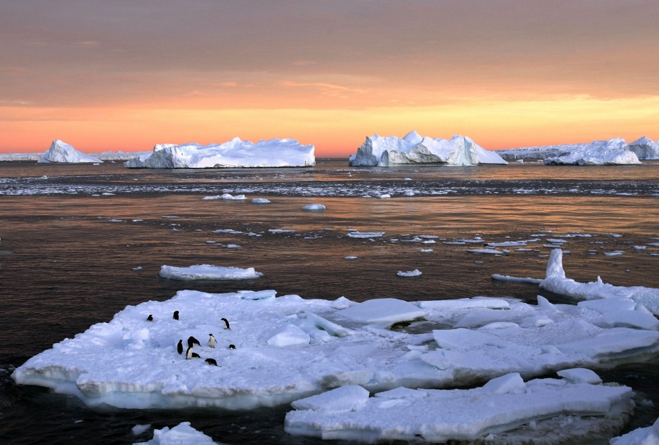 Adelie penguins stand atop ice near the French station at Dumont d'Urville in East Antarctica. Scientists found that a high ridge in the East Antarctic Plateau contains pockets of trapped air that dipped as low as minus 136 Fahrenheit (minus 93 degrees Ce