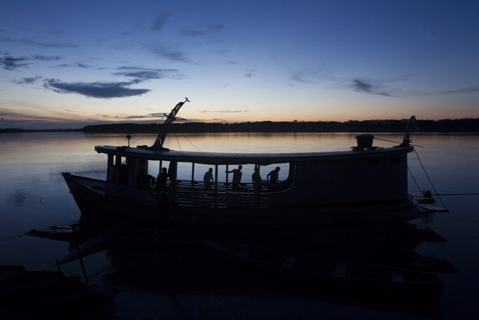 Commercial fishing of the arapaima has been banned by the Brazilian government due to its commercial extinction. Fishing is allowed only in certain remote areas of the Amazon basin.