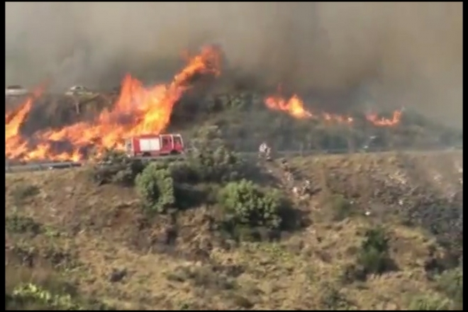 Tourist family jump off cliff to escape Spain wildfires