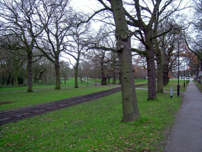 'Baby body parts' found in London park