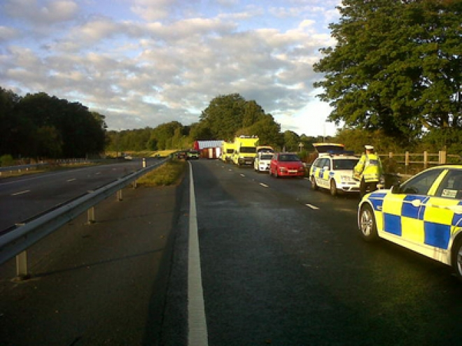 Three dead as coach smashes into oak tree in Surrey