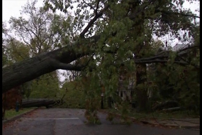 Hurricane Sandy: Washington DC begins clean-up