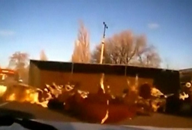 Cattle truck crashes sending cows flying
