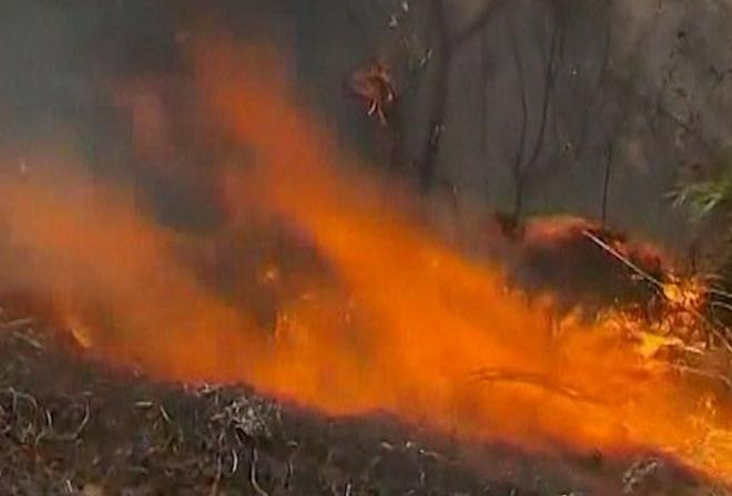 Australian bushfires continue to rage