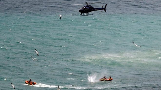 Man Dies After Shark Attack in New Zealand