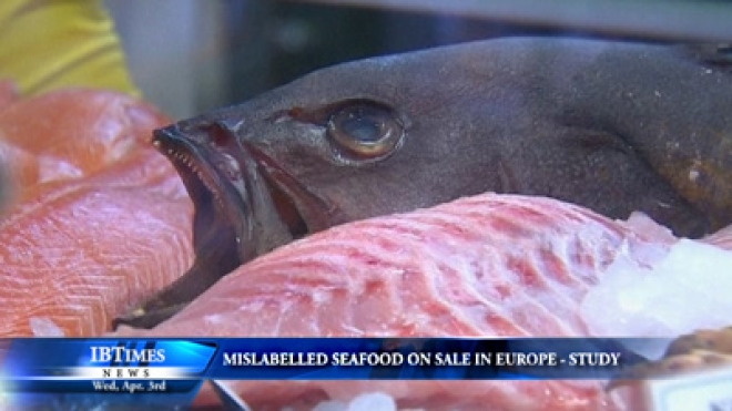 Mislabelled Seafood On Sale In Europe - Study