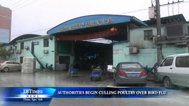 Shanghai Authorities Begin Culling Poultry As Bird Flu Deaths Rise